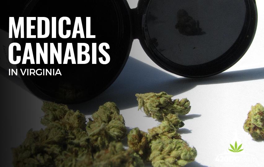 Medical Cannabis in Virigina