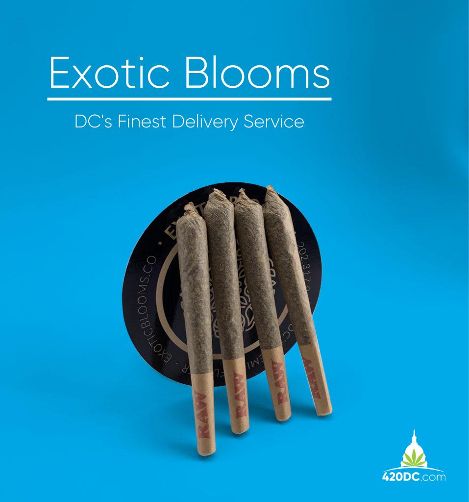 Exotic Blooms DC