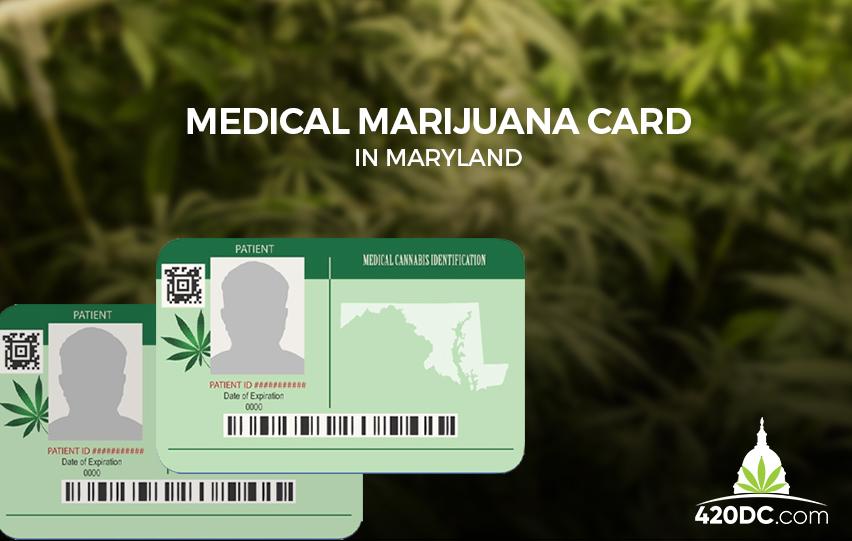 How to Get Medical Marijuana Card in Maryland