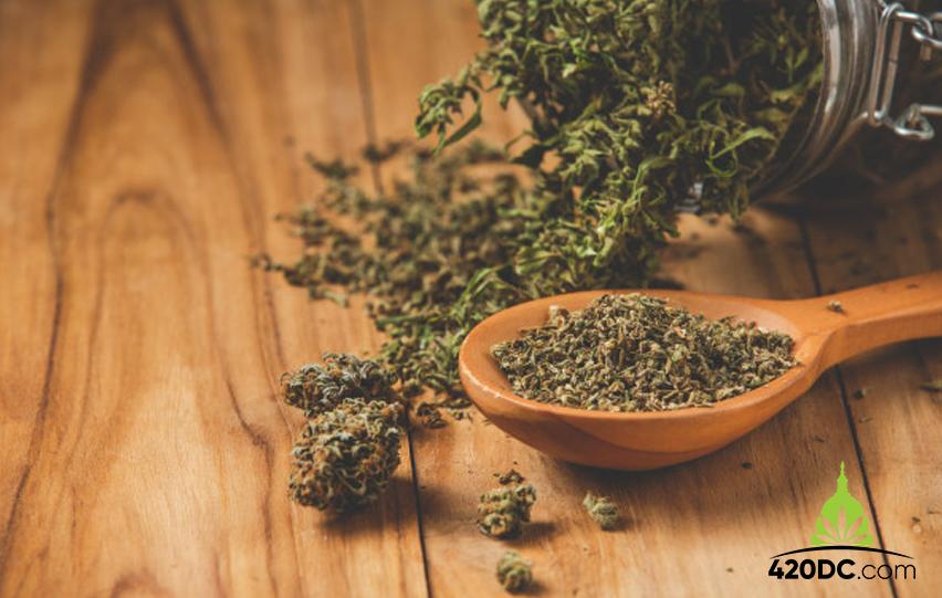 Cannabis in South Carolina