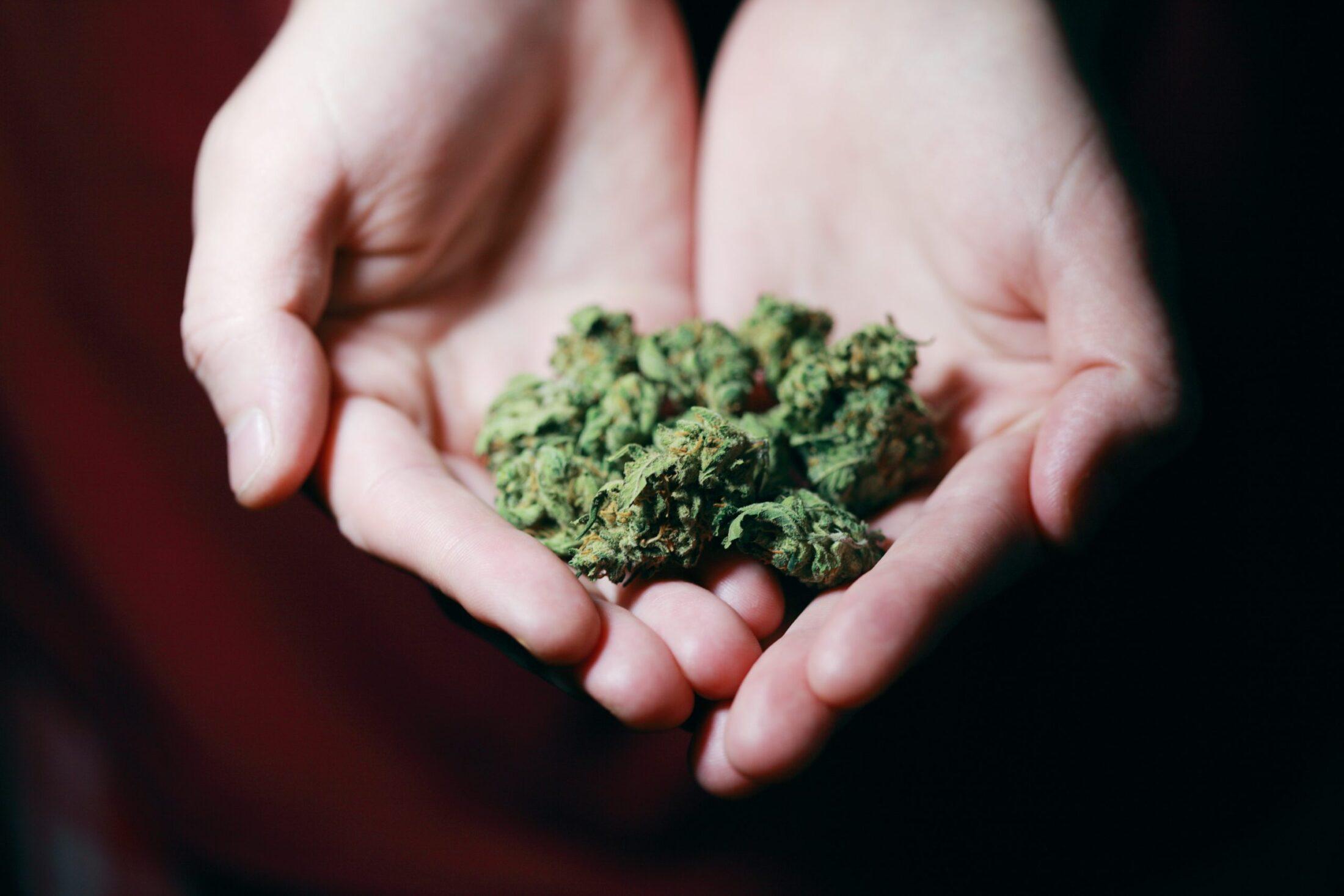 Medical Cannabis Pennsylvania