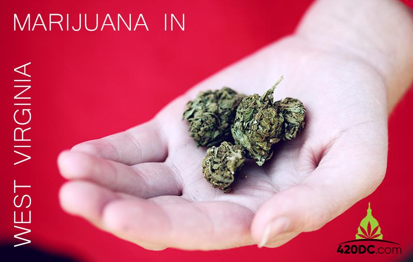 Marijuana In West Virginia