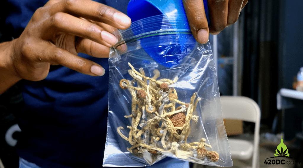 Are Magic Mushrooms Legal in DC? 1 2021