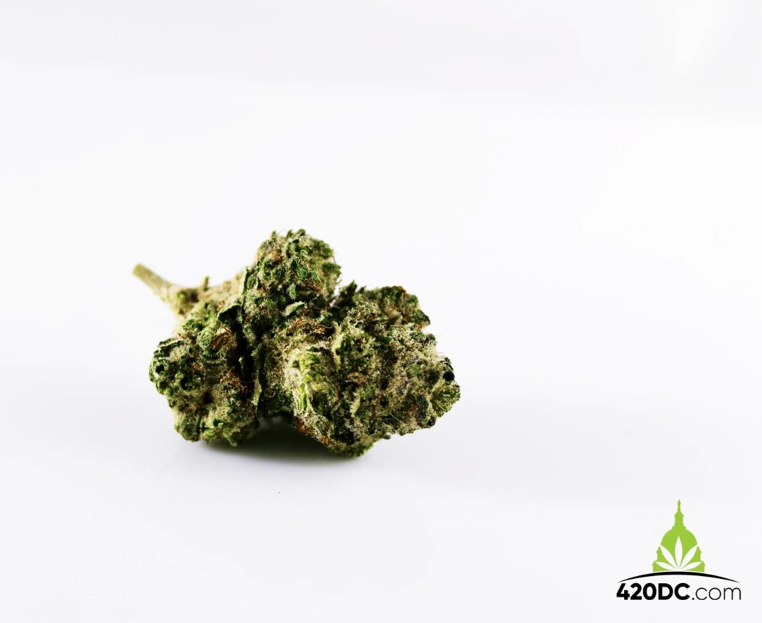 Marijauna, Cannabis and Covid-19