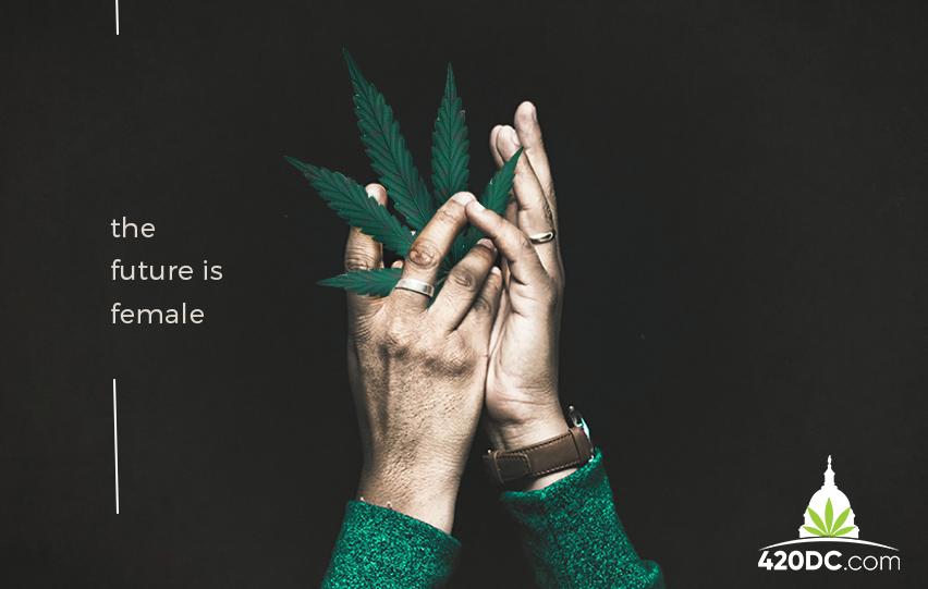 Women in Cannabis Industry