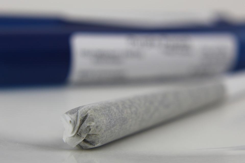 90% NY Students Want Recreational Marijuana Legal