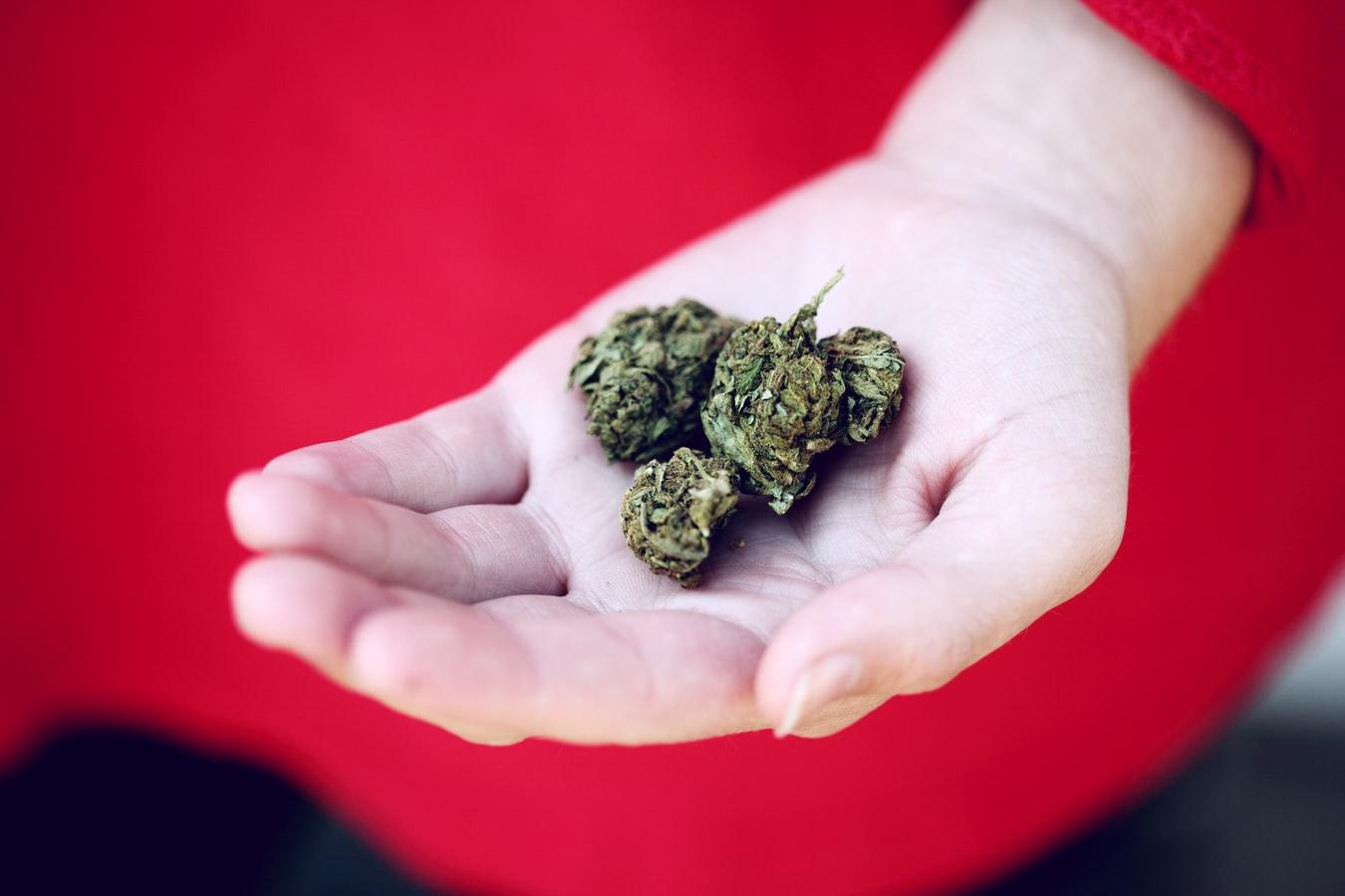Virginia Legislators Push for Full Marijuana