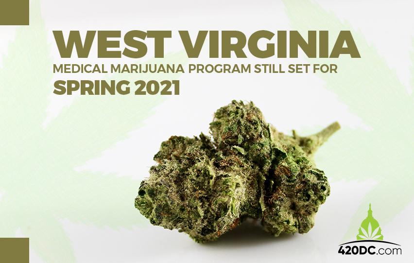 Medical Marijuana Program Still Set for Spring 2021