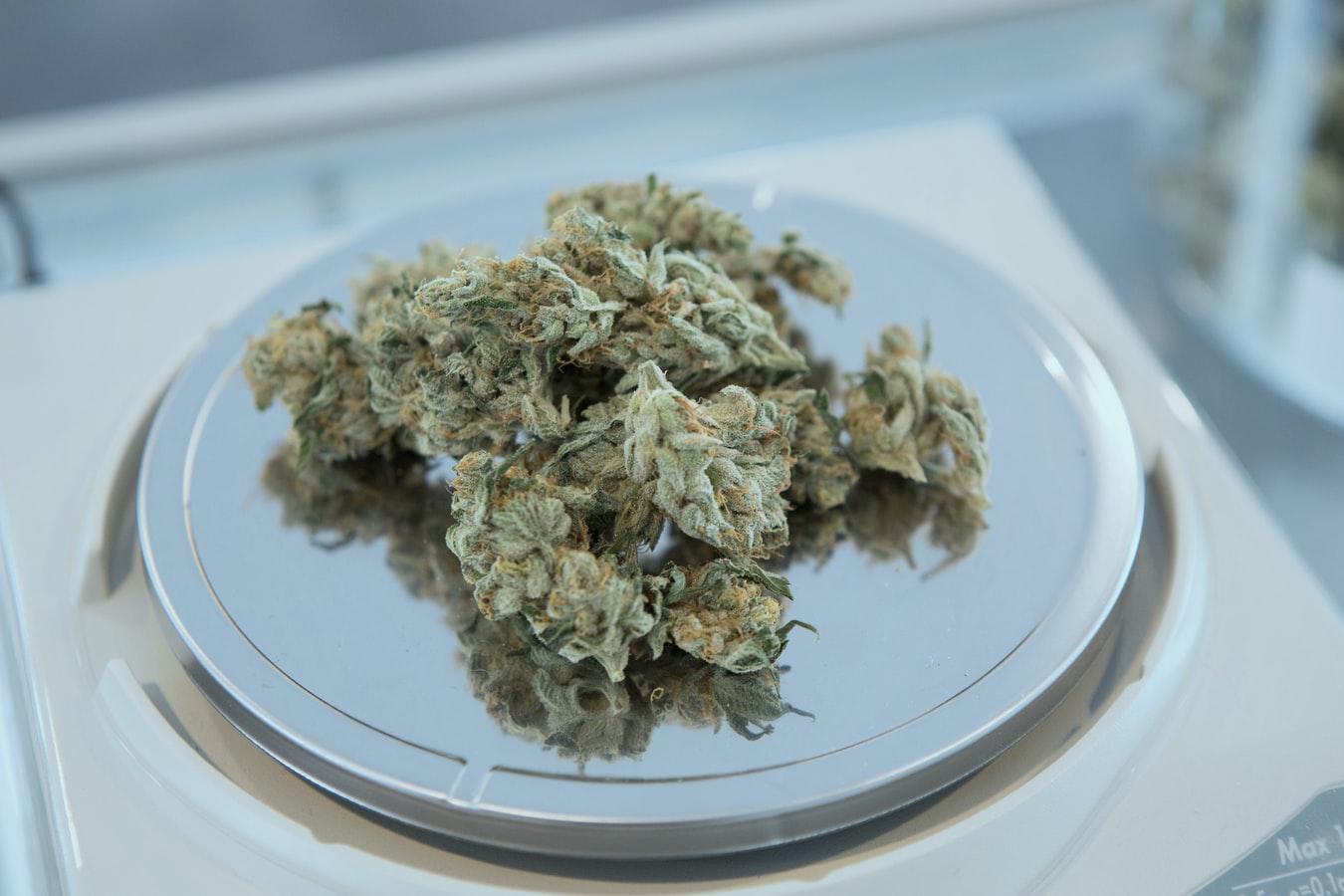 Virginia's First Medical Cannabis Dispensary