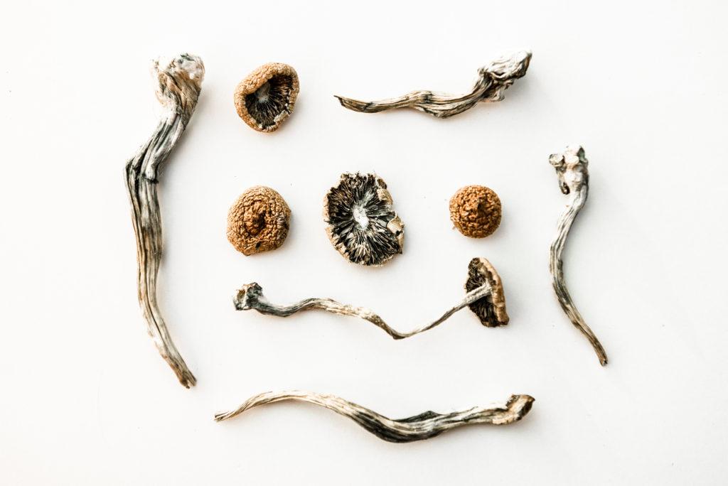 magic mushroom tea