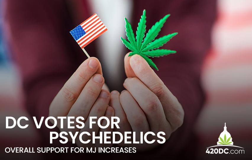 DC Votes for Psychedelics
