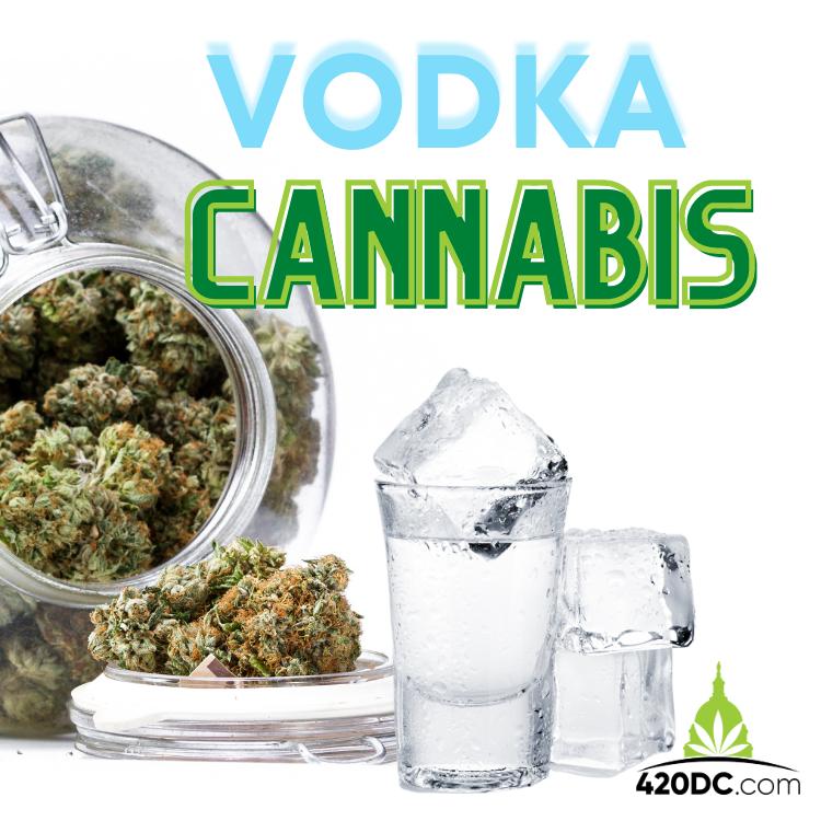 Vodka Cannabis | 420DC.com