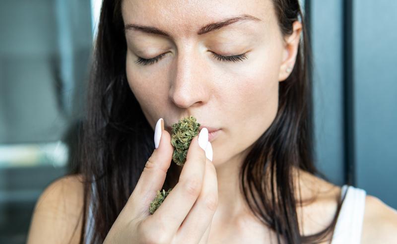 how does marijuana smell
