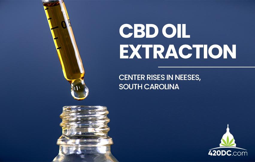 CBD Oil Extraction Center
