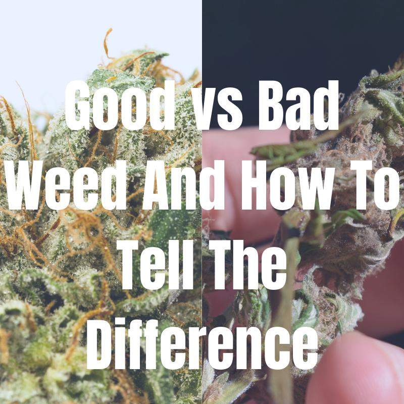 good vs bad weed