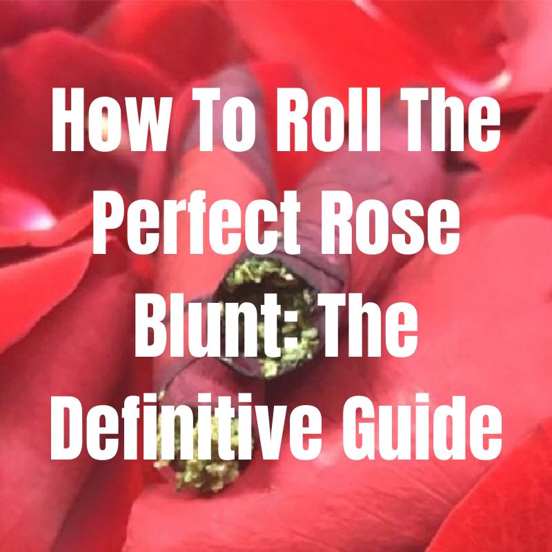 rose blunt