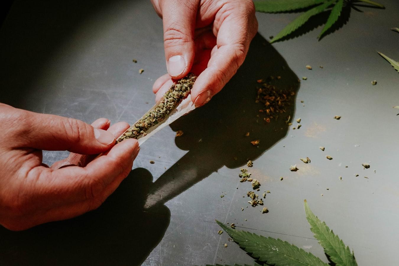 Activists to Give Marijuana to Vaccine