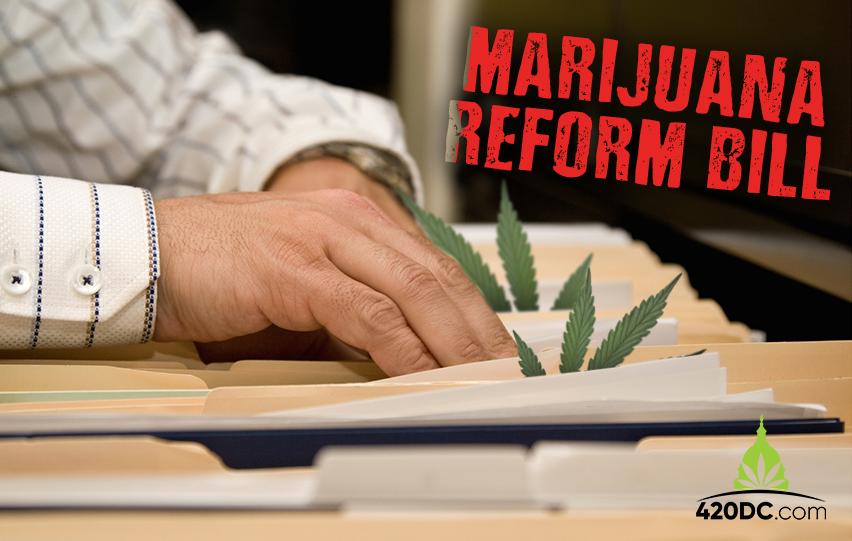 Marijuana Reform Bill in Kentucky