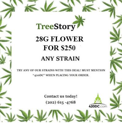 treestory 3