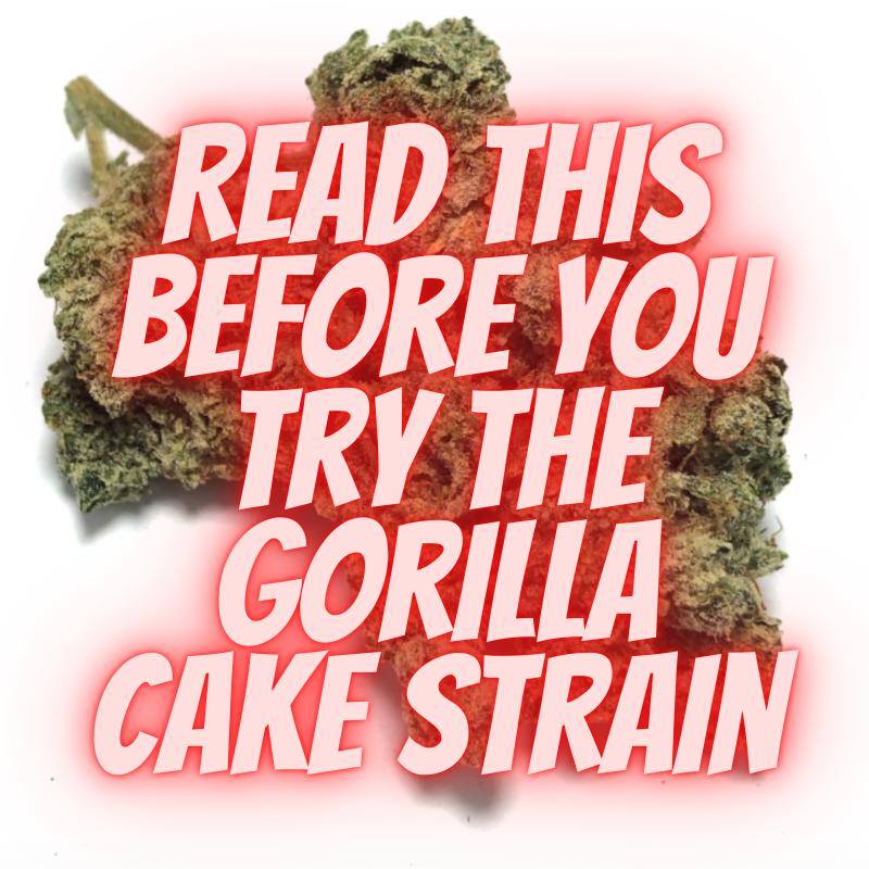 gorilla cake strain