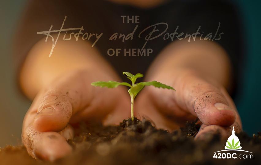 History and Potentials of Hemp