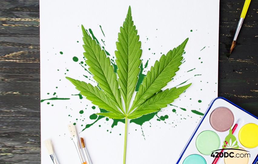Cannabis For Art