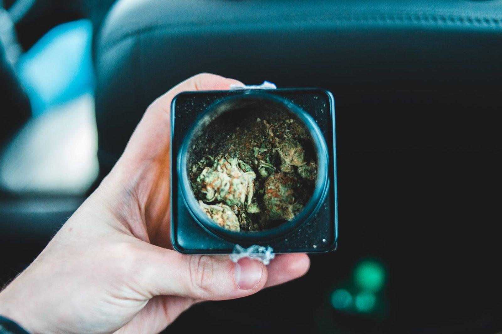 Maryland Cannabis Legalization