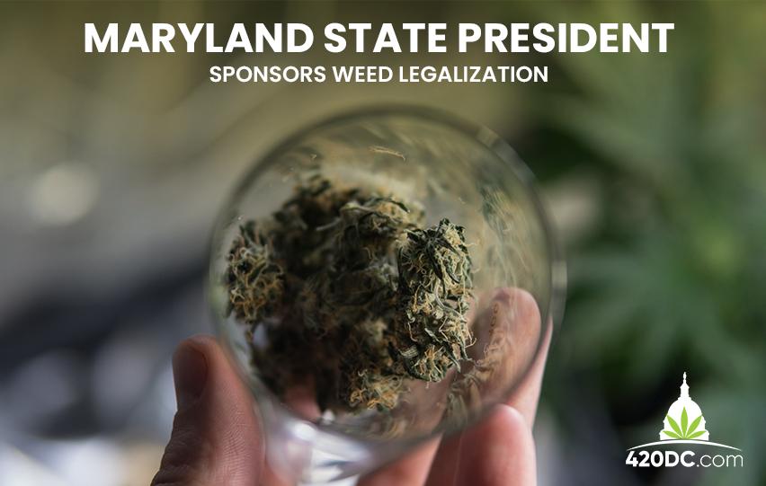 Cannabis Legalization Maryland