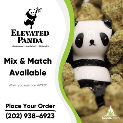 Elevated Panda 5