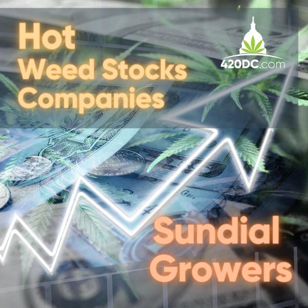 Hot Weed Stocks Companies - Sundial Growers - 420DC.com