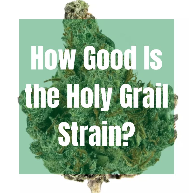 holy grail strain