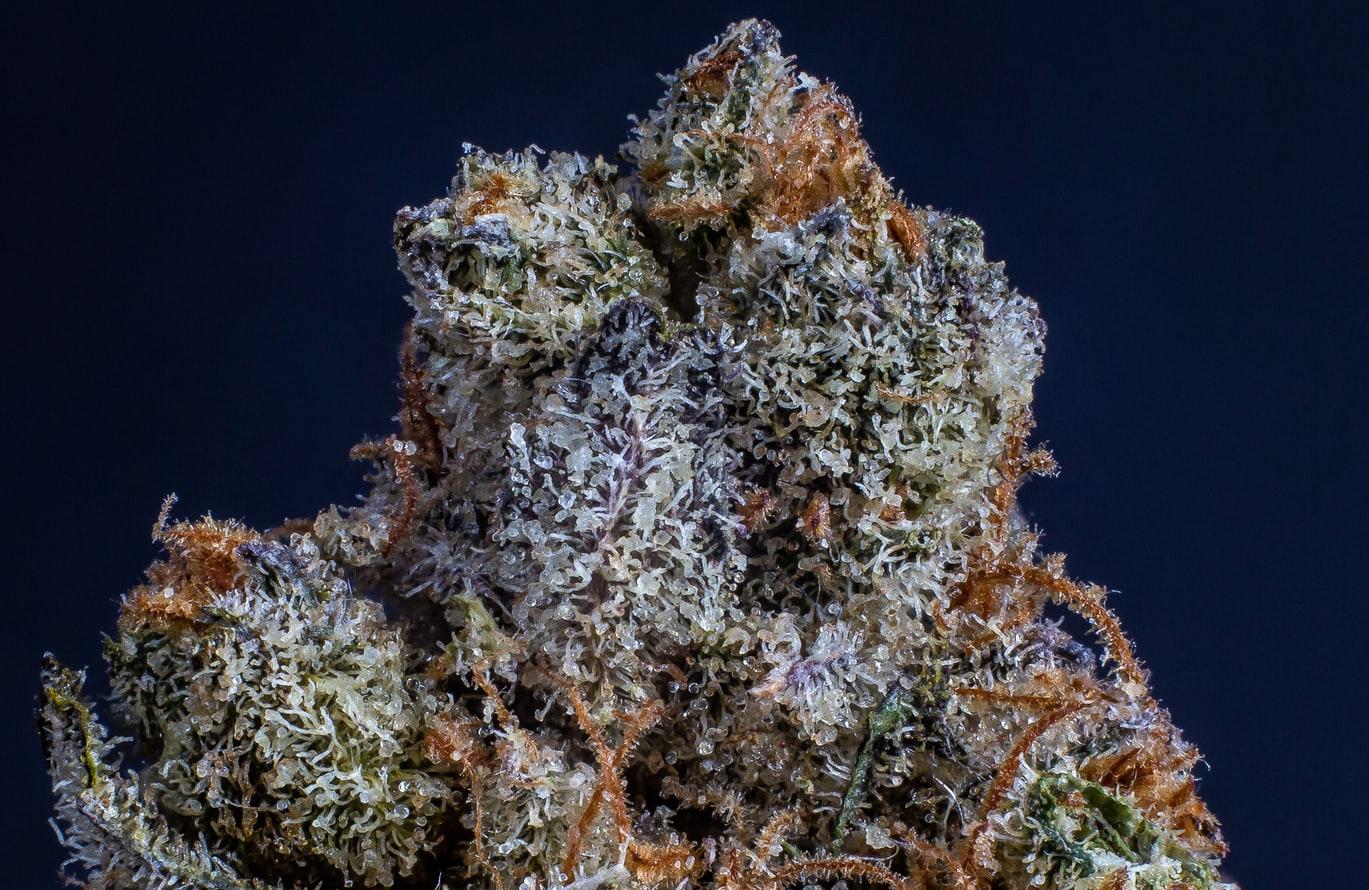 Tennessee Medical Marijuana Bill