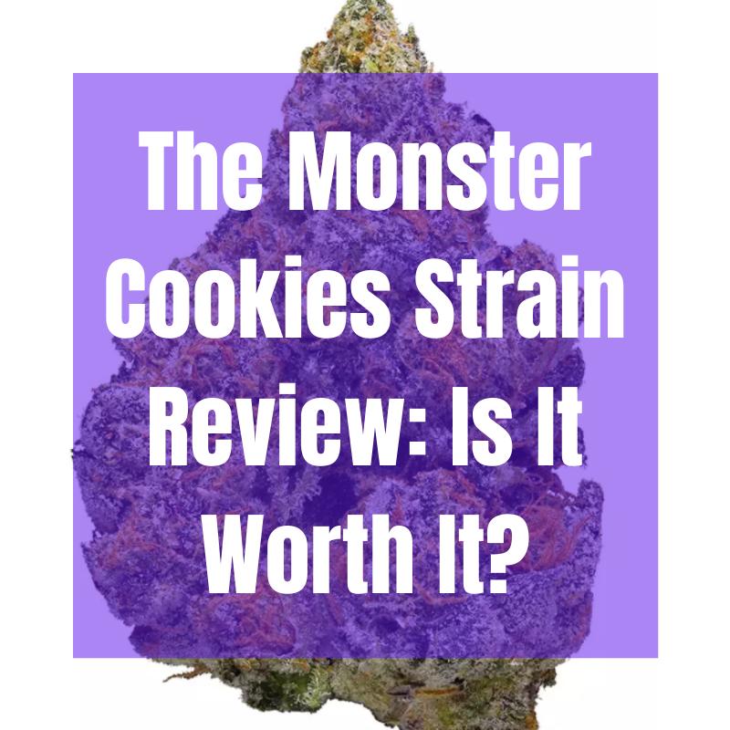 monster cookies strain