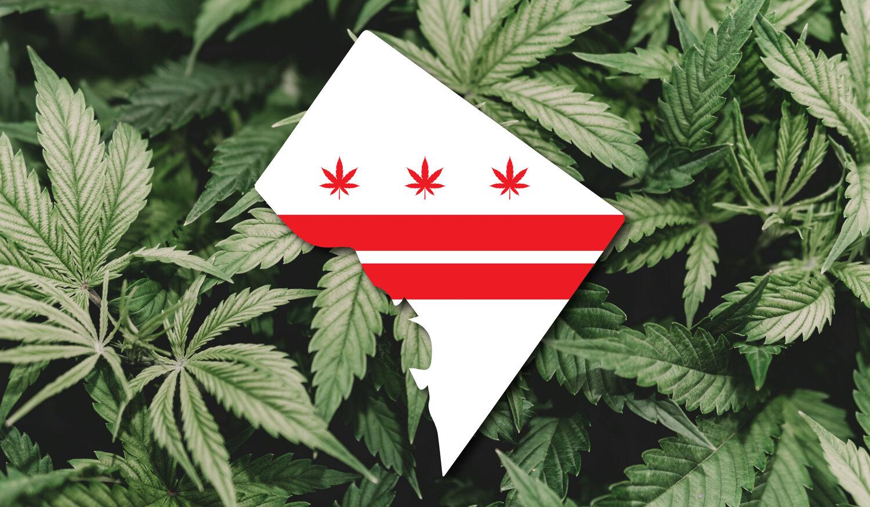 VA Legalization