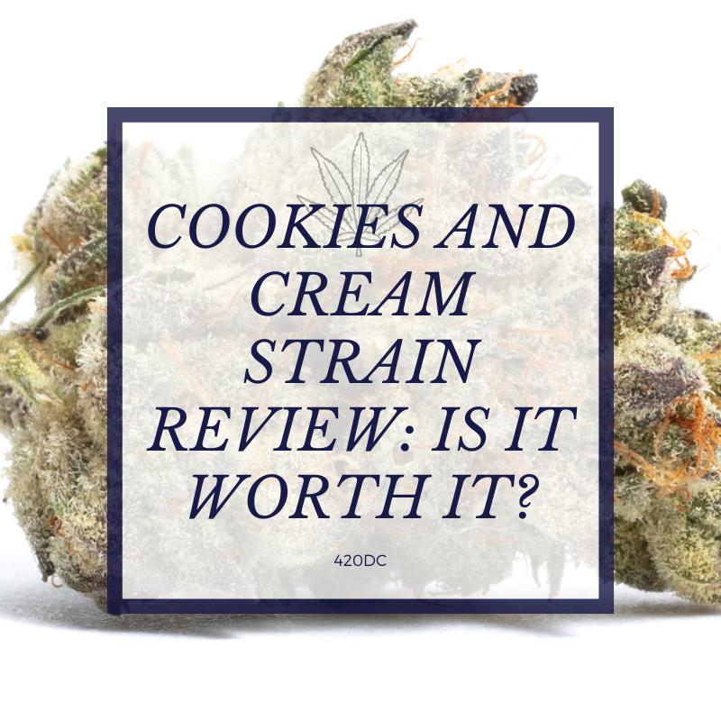 cookies and cream strain