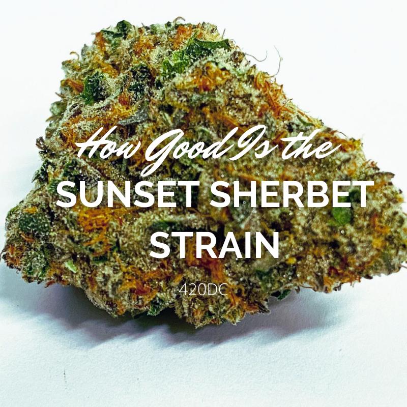 sunset sherbet strain