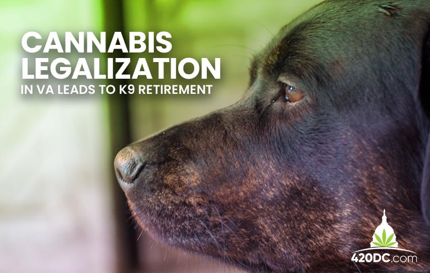 Cannabis Legalization K9 Retirement