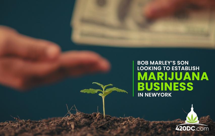 Bob Marley's Son Looking to Establish Marijuana Business