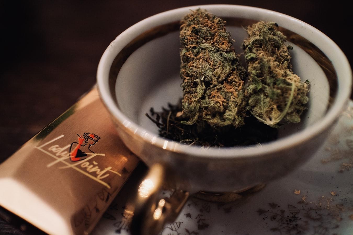 Bob Marley's Son Looking to Establish Marijuana Busines