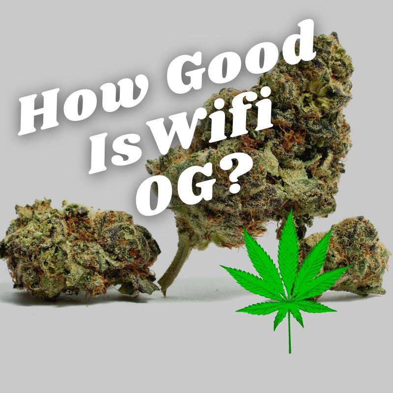wifi og