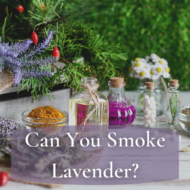 can you smoke lavender