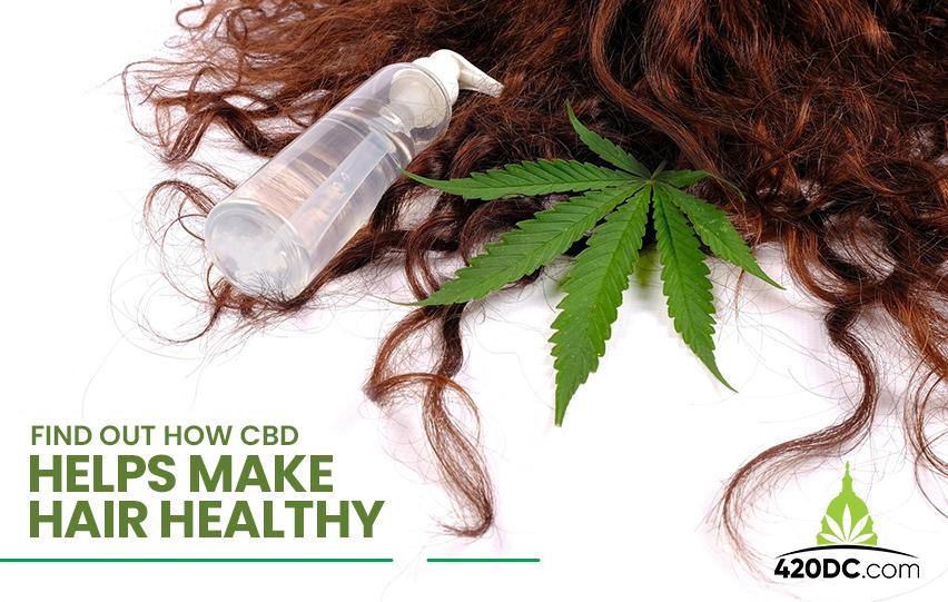 w CBD Helps Make Hair Healthy