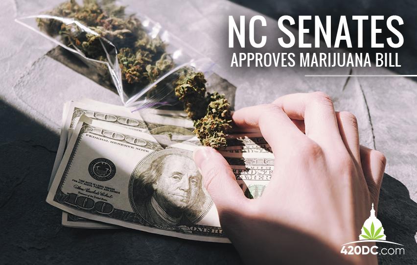 Senate Approves Marijuana Bill in First Committee Meeting