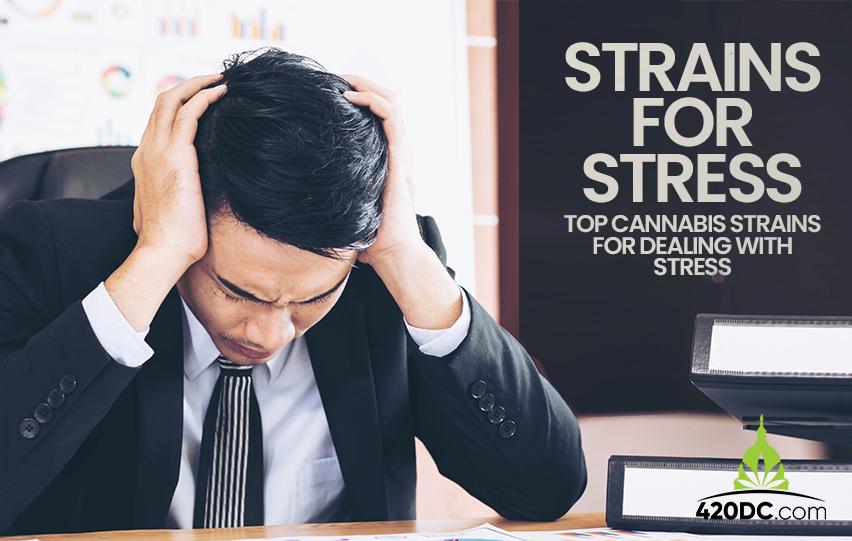 Strains Stress