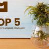 Biggest Cannabis Companies