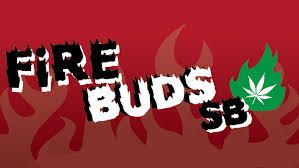fire buds dc